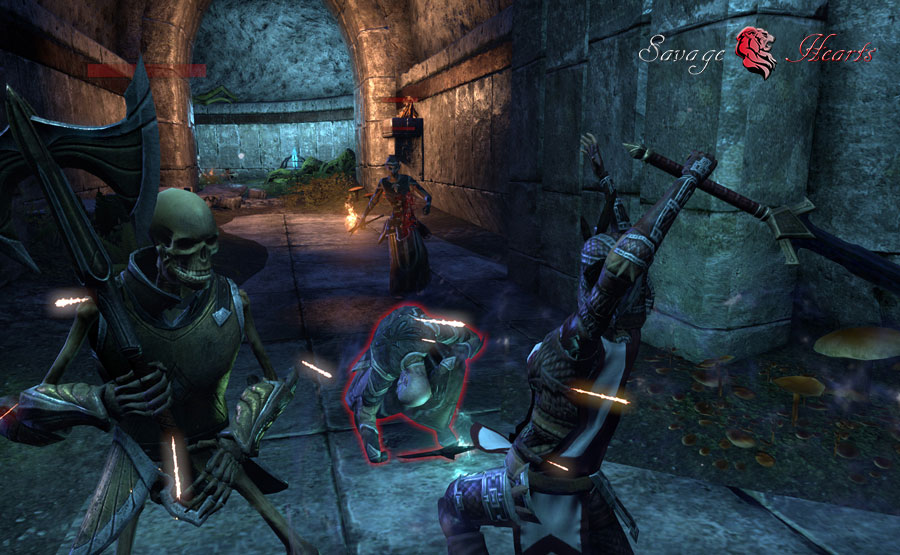 Testing Elder Scrolls Online DPS End Game PVE